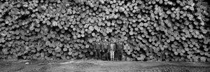 Goodrich Lumber mill in Albany, Vermont