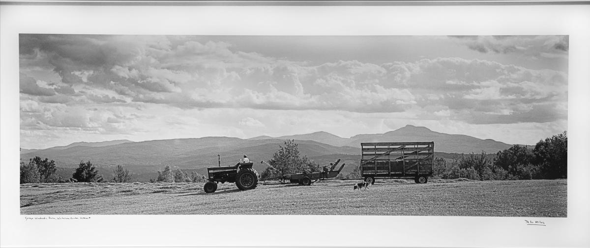 woodard-haying